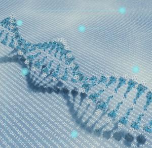 genetic_information